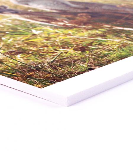 5mm Foamex Board